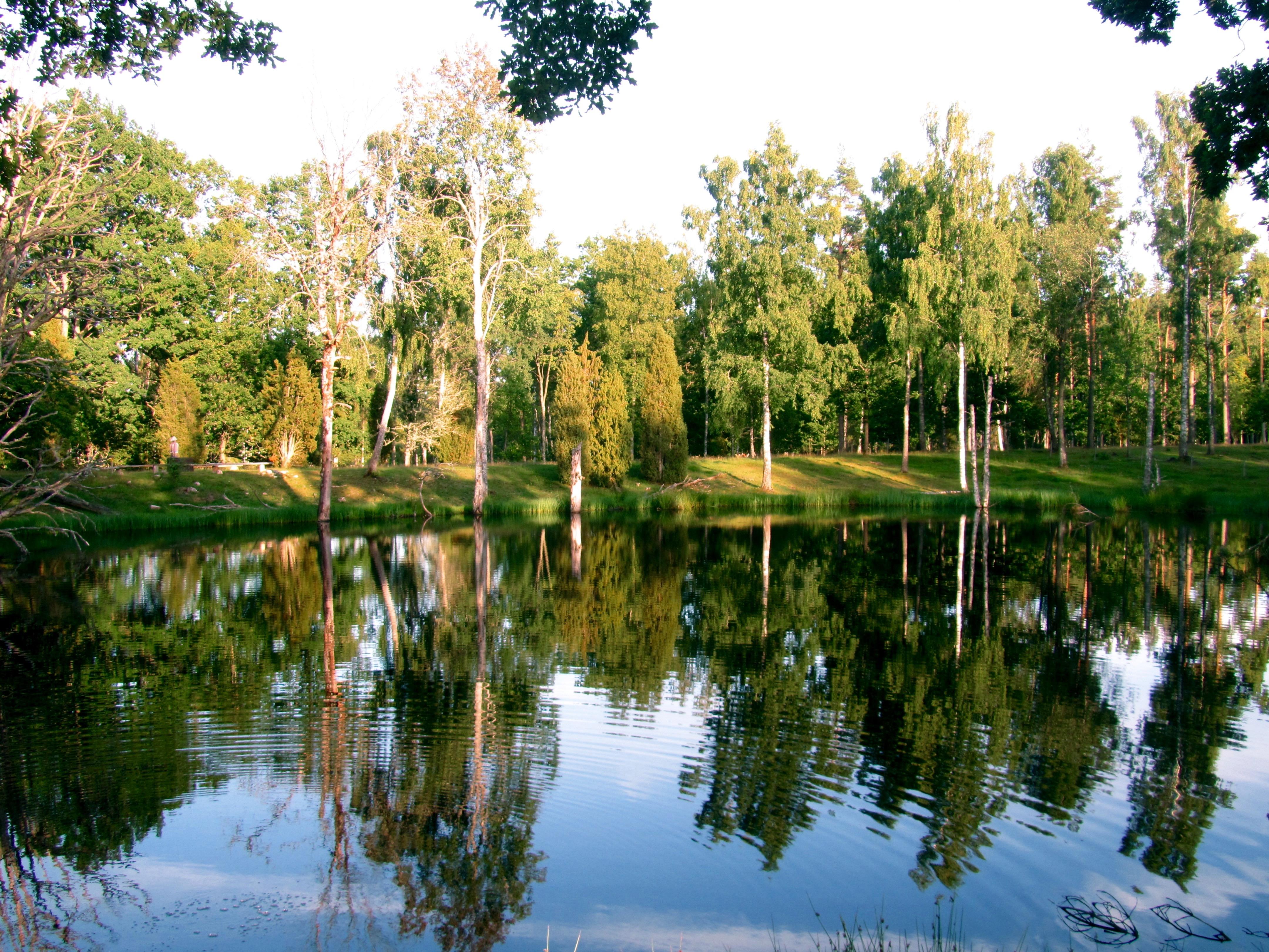 Keine Direktzahlungen bedeutet mehr Geld für Naturschutz - Naturschutzgebiet Korrö, Småland, Schweden
